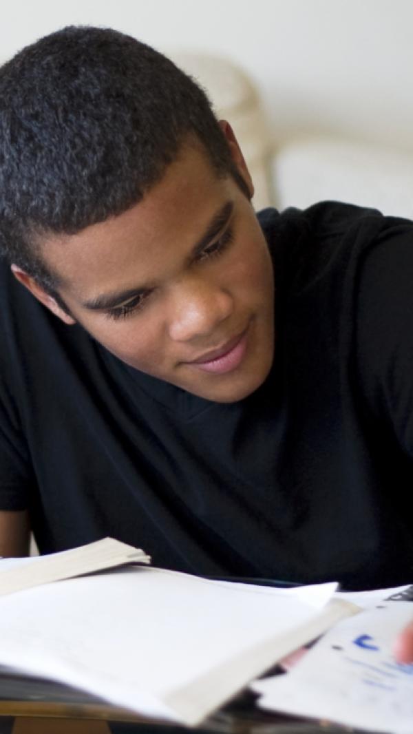 Extended School Year (Esy)/Summer School Virtual Instruction Plan
